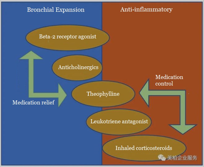 Industry Research | Respiratory Drugs and Products to treat Asthma and COPD