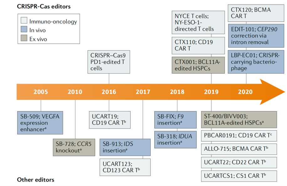 Industry Research | Reflections on CRISPR's Potential (Part 2)